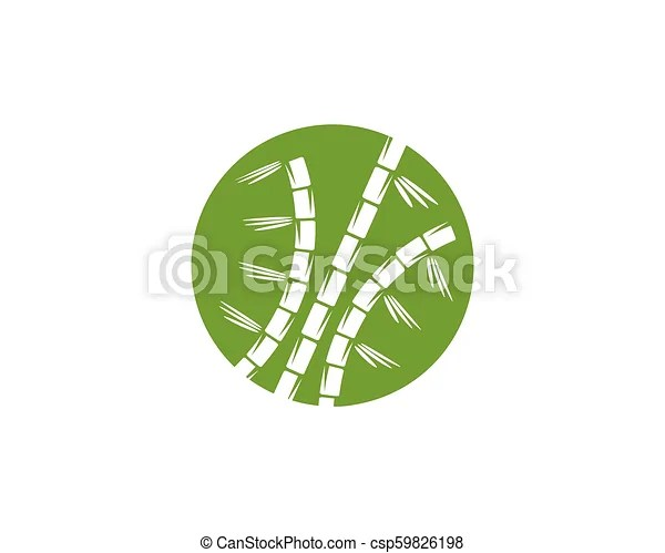 Bamboo logo with green leaf for your icon vector template Bamboo