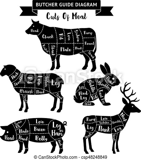 Beef Meat Chart Cutting Guide wwwpicturesso