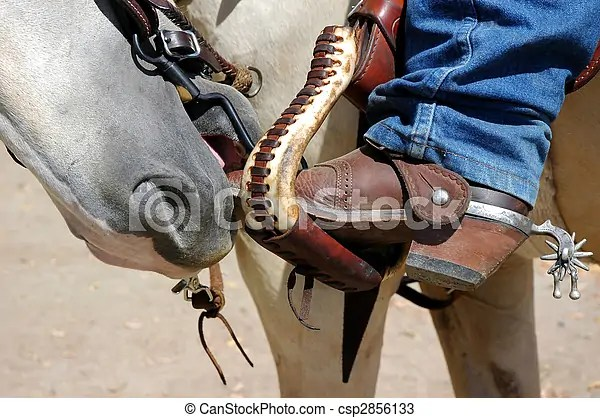 Horse Nose And Boots Horse Nibbling Toe Of Cowboy Boots