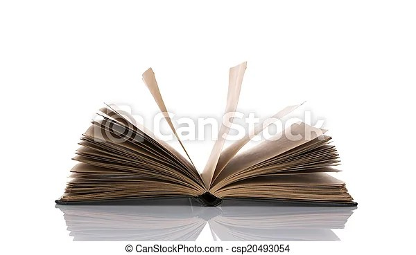 Opened book with blank pages isolated over white background - opened book