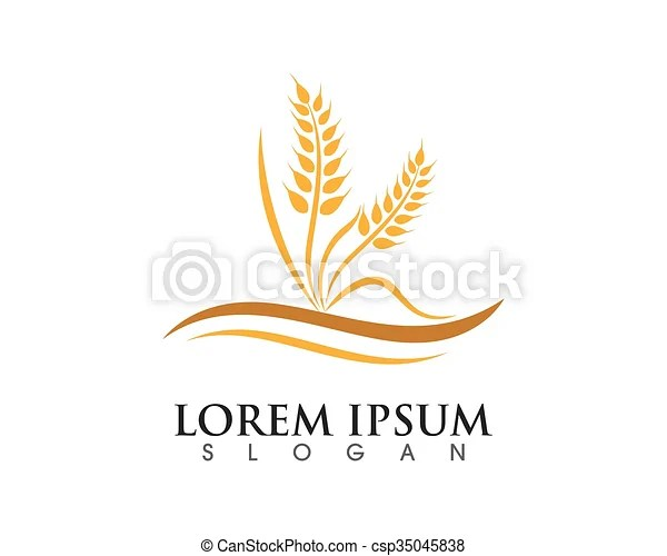 Wheat logo template - wheat template