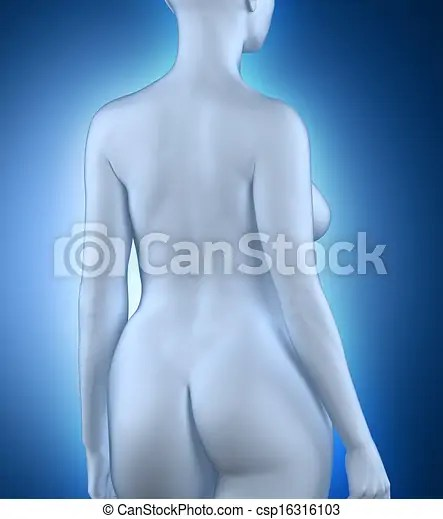 Woman in anatomical position white posterior view - anatomical position