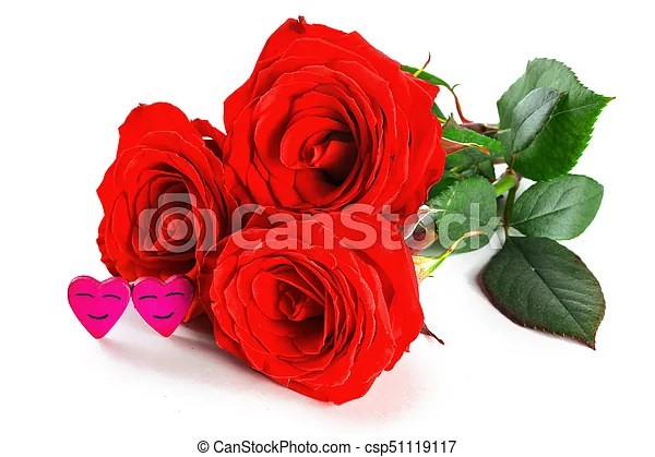 Rosas, corazones Valentines, aislado, rosas, plano de fondo - rosas y corazones