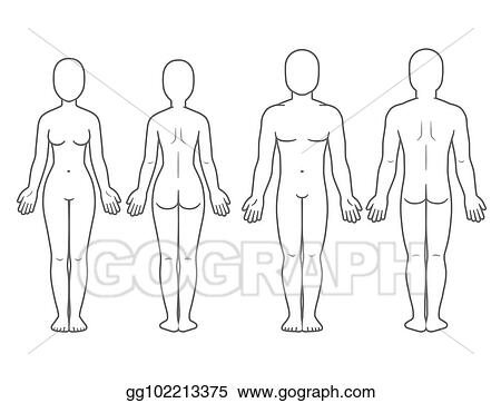 Vector Art - Male and female body front and back EPS clipart