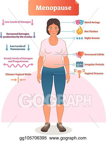 Vector Clipart - Menopause labeled vector illustration medical