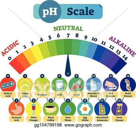 Vector Art - Ph acid scale vector illustration diagram with acidic
