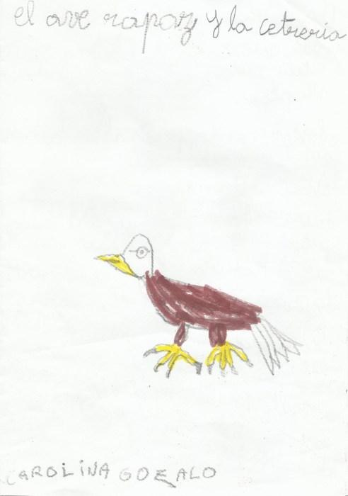 Carolina Gozalo - El ave rapaz y la Cetrería
