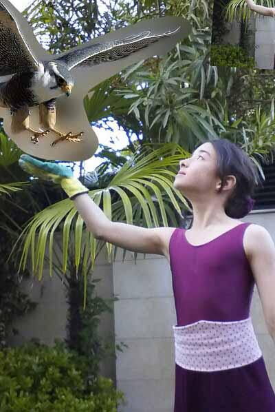 María Casals - La bailarina y el halcón