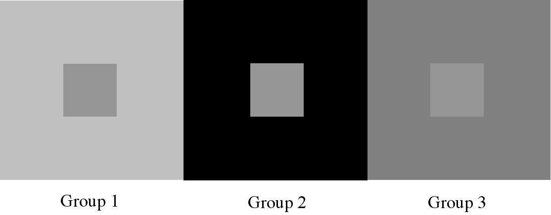 Jessica M Choplin Perceptual Comparisons Contrast Effects Ebbinghaus