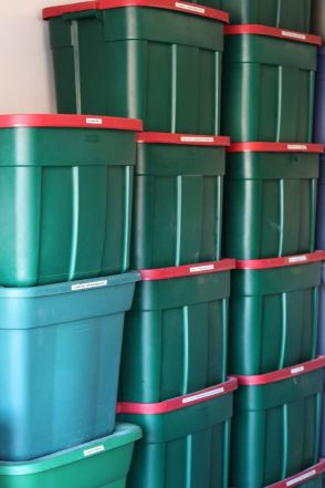 Labeled Storage Bins