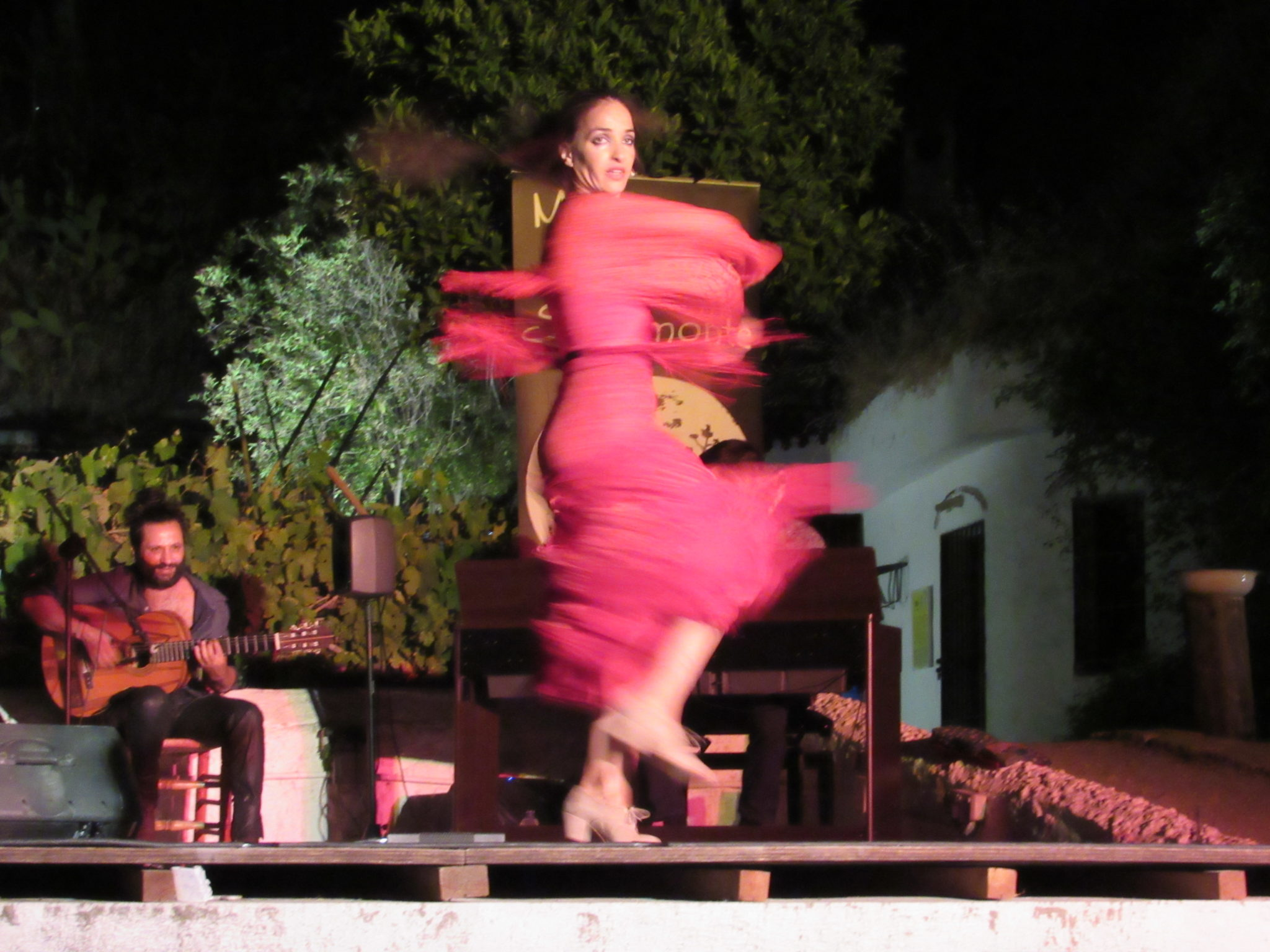 Flamenco Arte Y Ole A Flamenco Experience In Granada Spain Confetti Travel Cafe