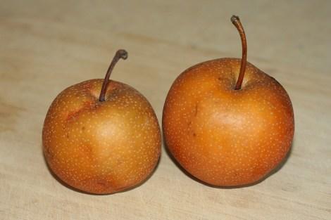 asian-pears