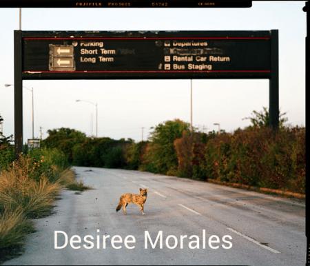 Morales Poems