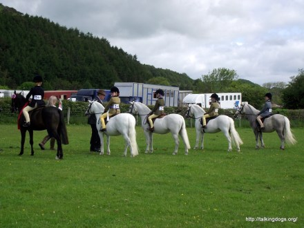 Ulverston & District Equine Club Photos