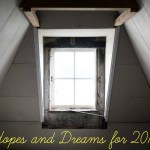 Hopes and dreams for 2015