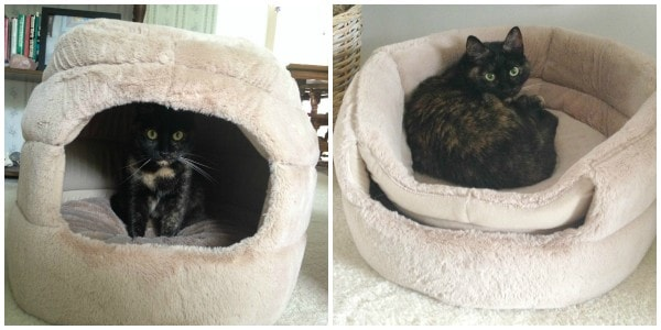 pet-house-bed