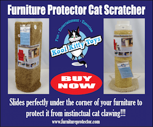 Kool Kitty Furniture Scratcher Ad