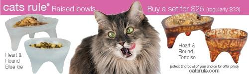 cats-rule-bowl-ad_500x150-pixels