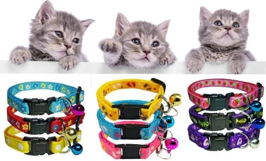 cat-collars