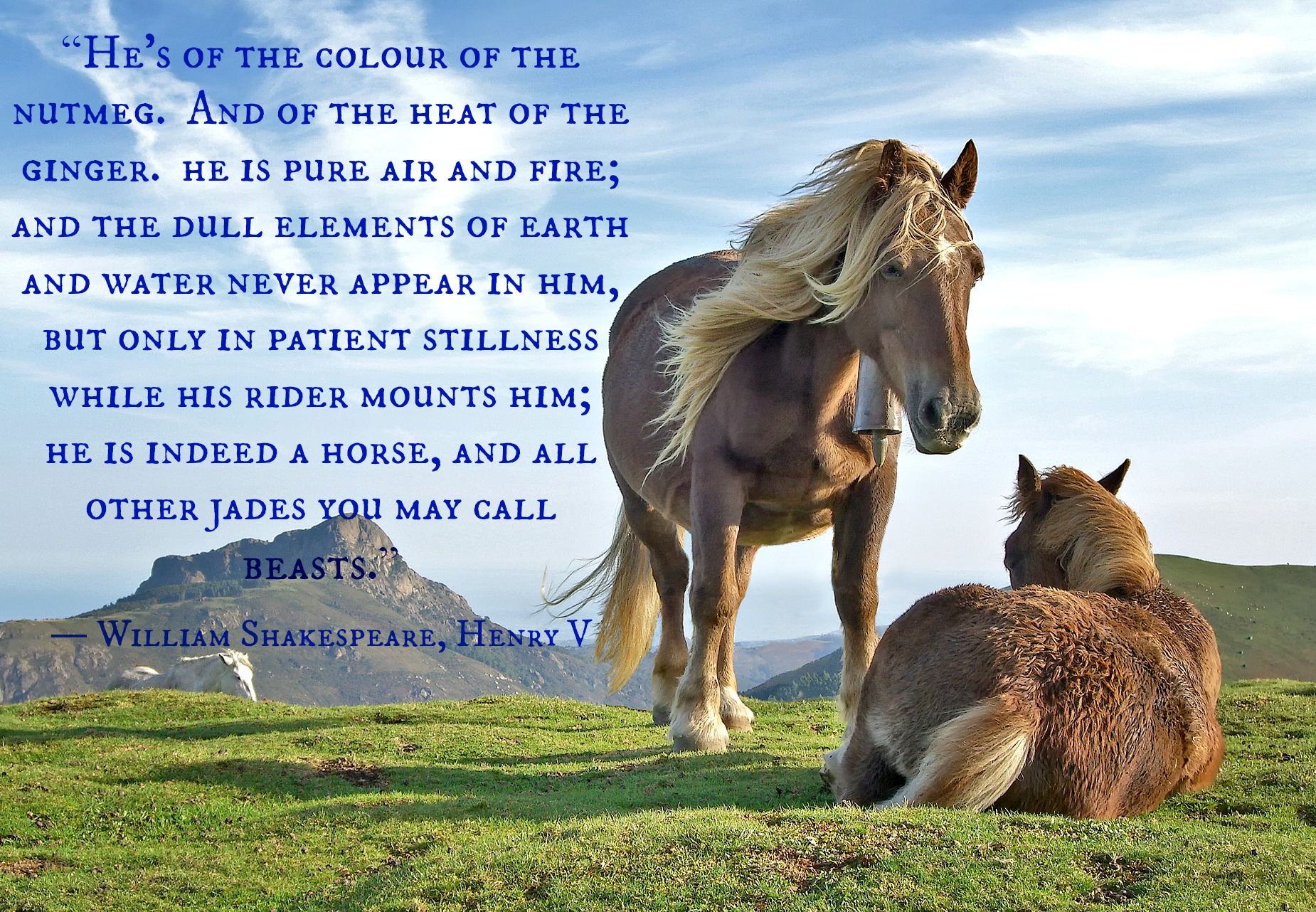 Christian Wallpaper Fall Happy Birthday Horse Quotes Conscious Companion