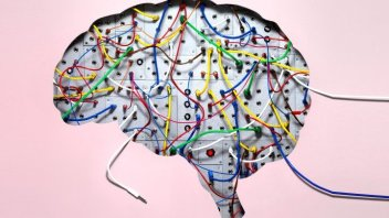 Better Mind, Better Life: Rewire Your Brain For New Healthy Habits