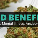 Cannabidiol, or CBD, Benefits for Pain, Mental Illness & Anxiety