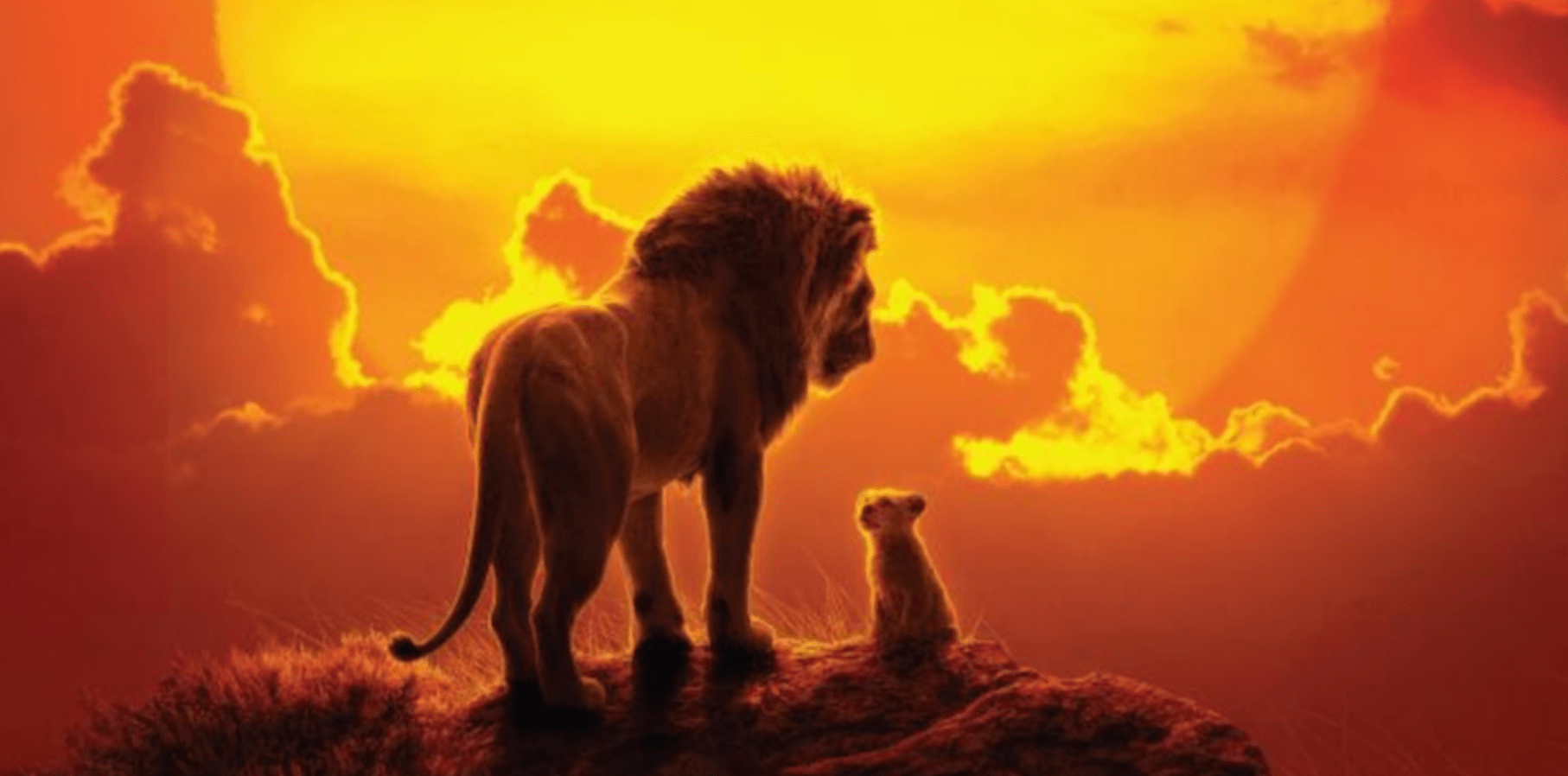 the lion king 2019 donald glover