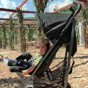 Adventures & Fun with G-LUXE Stroller by UPPAbaby