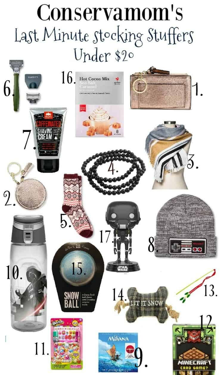 Last Minute Stocking Stuffers for Under $20