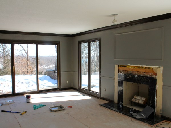 Grey Color Paint Living Room Remodel