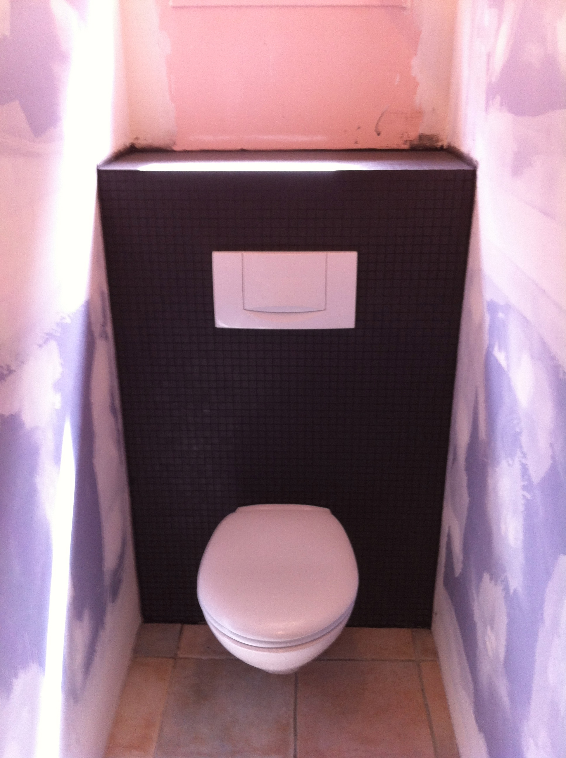 Wc Carrelage Noir Pose De Wc Dream House