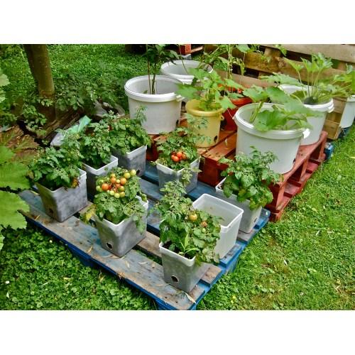 Medium Crop Of Pallet Container Garden