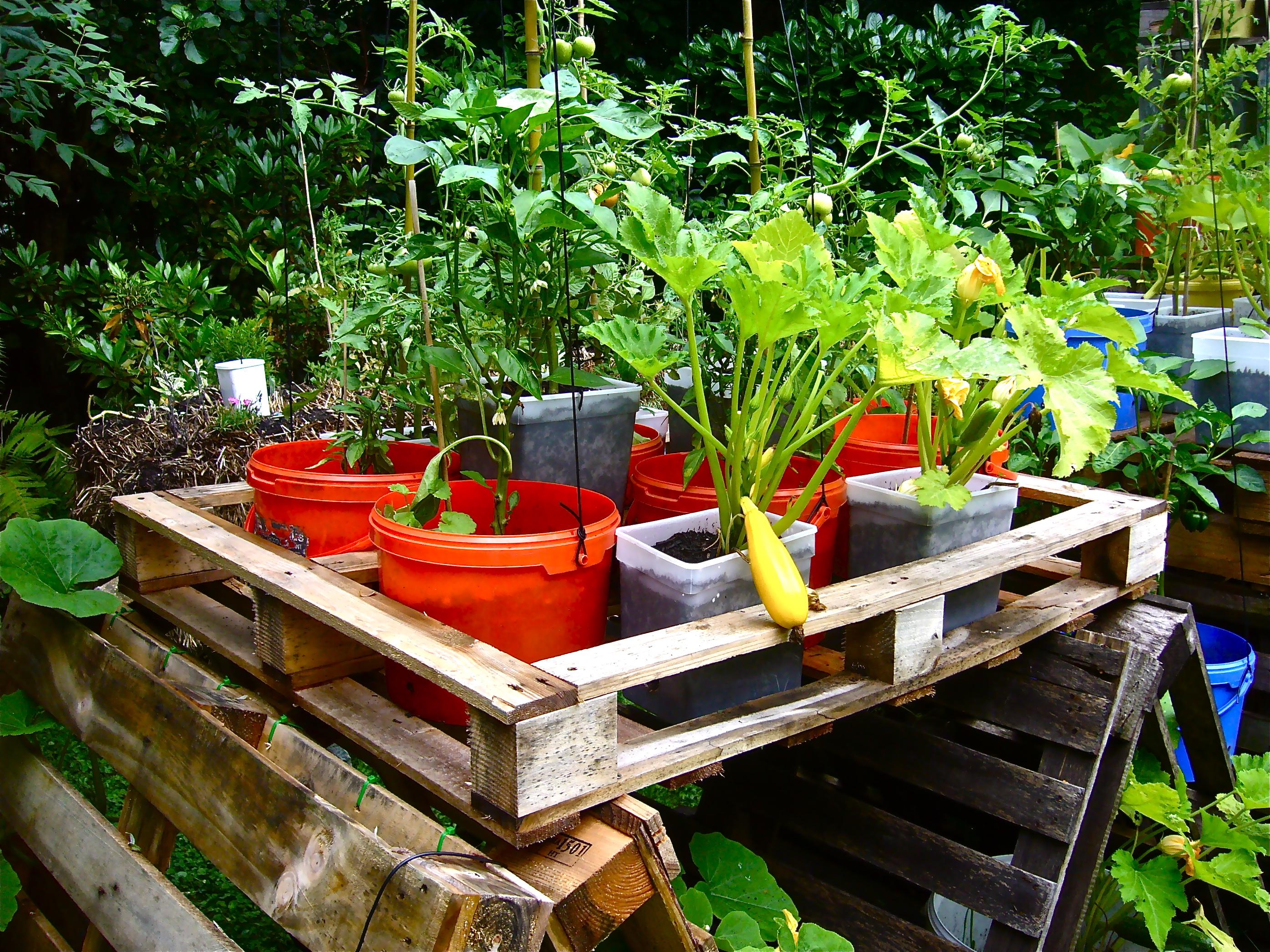 Fullsize Of Pallet Container Garden