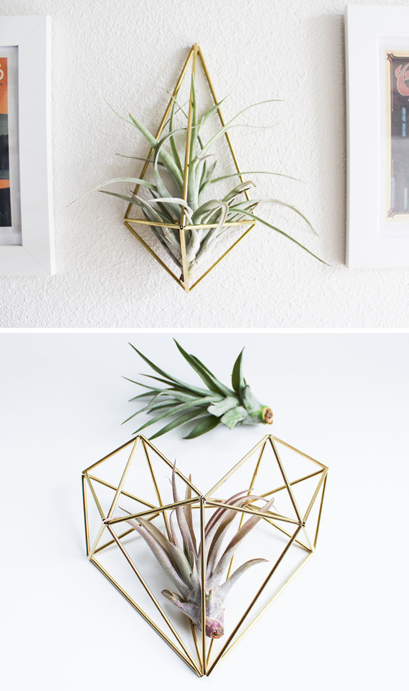 Air Plant Wall Holder 12 Elegant Ways To Bring Air Plants Into Your Home Contemporist