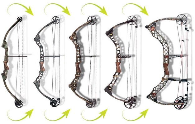 Crossbow Vs Roundup Compound Bows: Anatomy, Lingo, And Buying Tips | The Art