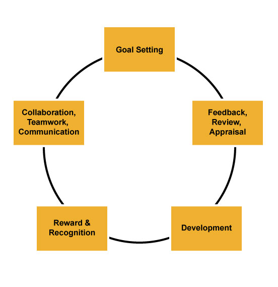 What Your Performance Management System Needs Most - effective employee management strategy
