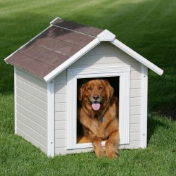 Small Of Extra Large Dog House