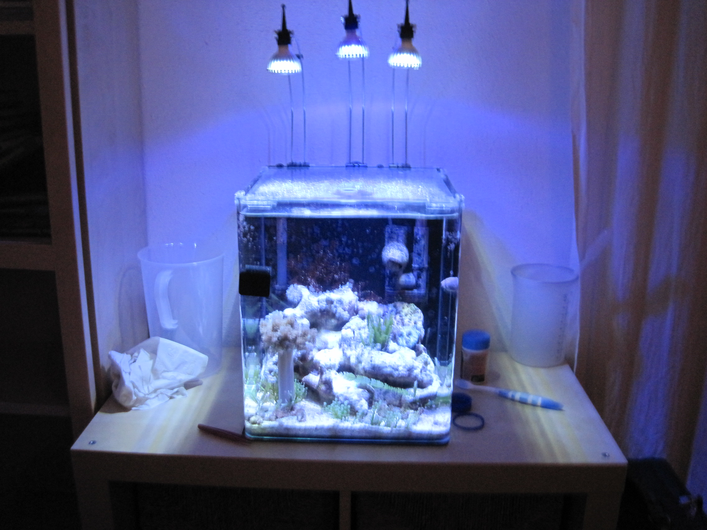 Eclairage Led Dennerle Ecoxotic Led Club Page 11 Lighting Forum Nano Reef