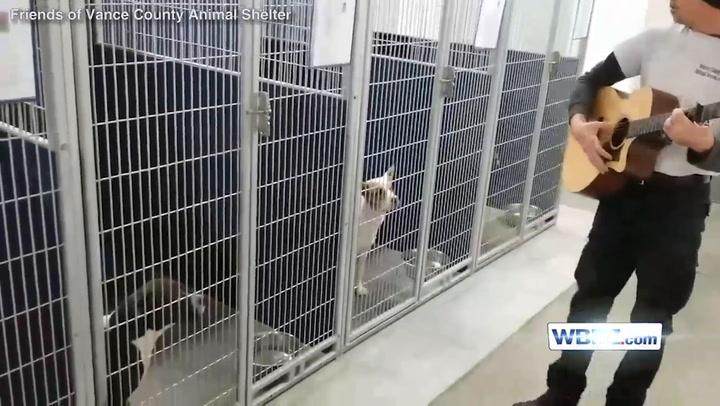 Fullsize Of Vance County Animal Shelter