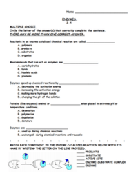 Enzymes 9th - 12th Grade Worksheet | Lesson Planet