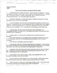 Genotype, Gametes, and Monohybrid Crosses 9th