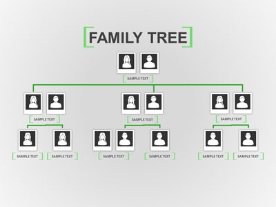Family Tree Toolkit - A PowerPoint Template from PresenterMedia