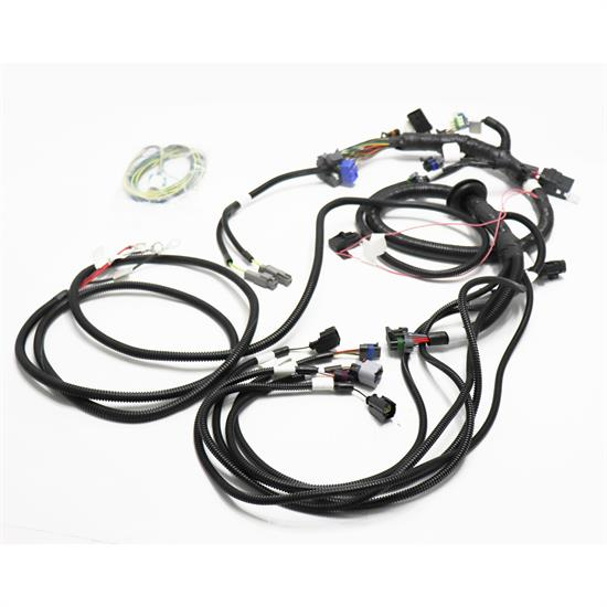 race car chassis wiring harness
