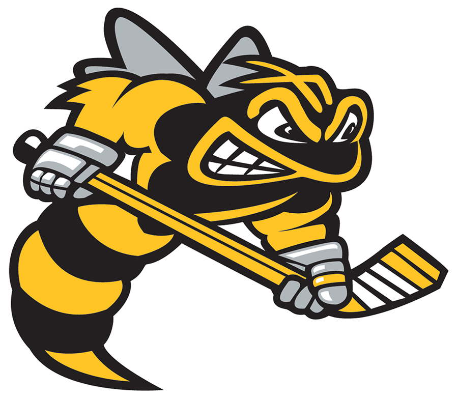 Hockey Logos Sarnia Sting Secondary Logo Ontario Hockey League Ohl Chris