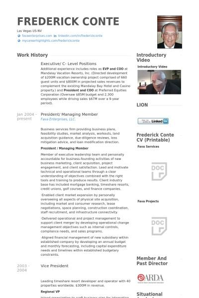 24 Best Sample Executive Resume Templates - WiseStep