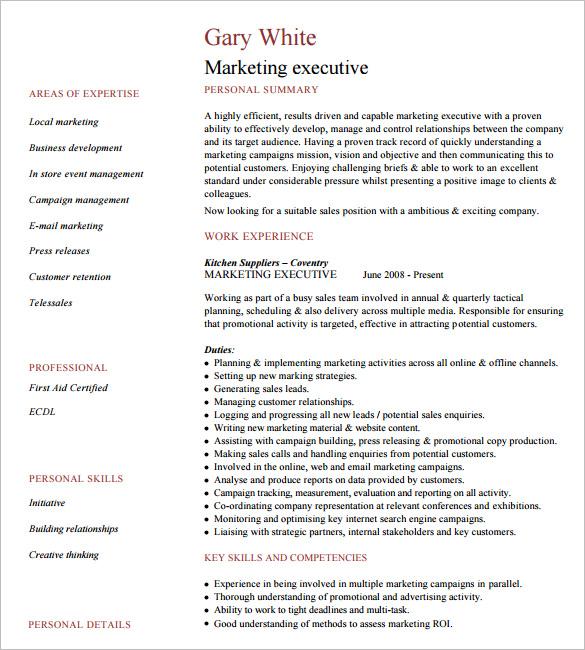 Example Executive Resume Executive Resume Samples 10+ Executive - executive summary in resume