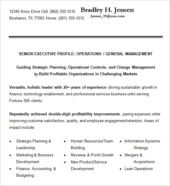 24 Best Sample Executive Resume Templates - WiseStep