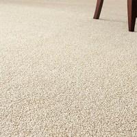 Home Depot Carpet Tiles | Tile Design Ideas