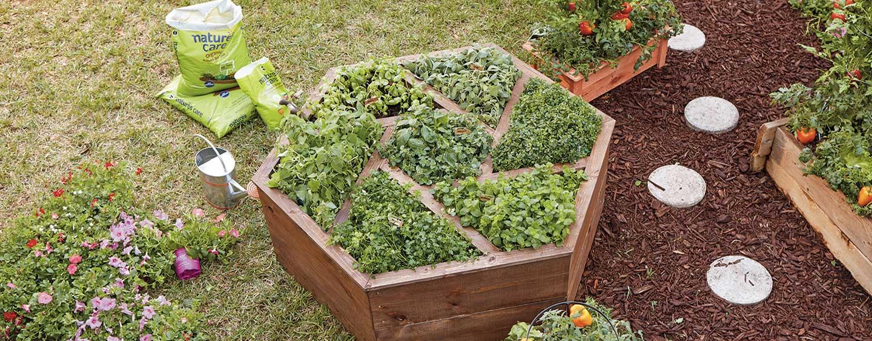 How To Build A Hexagon Planter