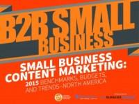 2015_B2B_SmallBiz_Cover